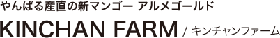 やんばる産直の新マンゴー アルメゴールド KINCHAN FARM / キンチャンファーム